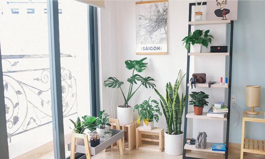壁にちょこっとグリーンを!壁掛け植物ポットの作り方。